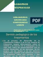 15642337-Elementos-Conceptuales-Competencias-Logros.ppt