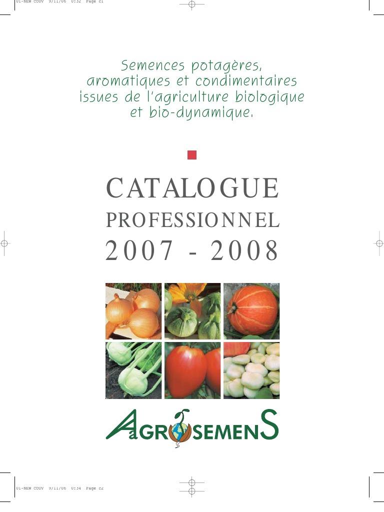 Légume Tomate Cuore di bue 1500 graines en vrac