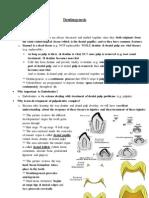 7- Dentinogenesis.pdf