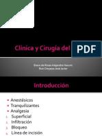 Clínica y Cirugía del bovino