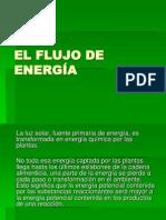 5cbelflujodeenergiaglucoyfoto-100629155349-phpapp01