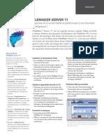 datasheet_fms11_fr.pdf