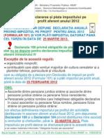 Definitivarea Impozitului Pe Profit 2012 (15.01.2013)