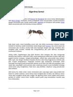 Algoritma Semut