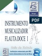 Instrumento Musicalizador Flauta Doce I