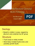 Seismic Reflection