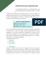 monografia bartonellosis