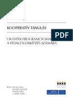Kooperativ-tanulas
