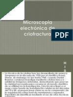 Microscopia  electrónica de criofractura