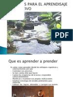 esrategiasparaelaprendisajesignificativo-110310161329-phpapp01