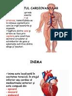 Aparatul Cardiovascular Inima