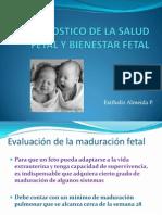 Diagnostico de La Salud Fetal y Bienestar Fetalf