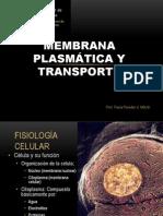 CLASE Membrana Plasmatica KINESIOLOGIA