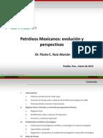 Presentacion Puebla 21III13