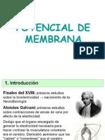 potencialdemembranacelular-110919081713-phpapp01