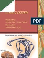 Brain & Limbic System