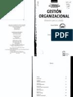 Gestión Organizacional. Darío Rodríguez