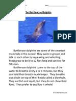 The Bottlenose Dolphin First Grade Reading Comprehension Worksheet