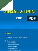 4-GINJAL & URIN.ppt