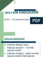 Fisiologi Organ Endokrin