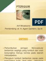 Pterigium Fix