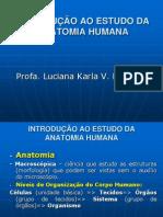 Introdução_Anatomia[2]
