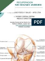 Lca - Protocolo Afis Ltda