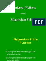 Magnesium Pp t