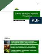 R. Cortez - El Nivel de REDD, Nacional y Proyectos