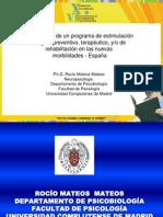 Metodología de un programa de estimulación integral ROCIO MATEOS MATEOS