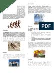 Antropología - Derecho - Historia - Psicología - Ciencias Sociales