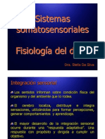 Sistemas somatosensoriales y fisiología del dolor