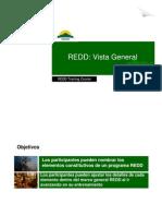 REDD, Vista General