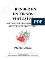Borraz Rozas Pilar Ensayo