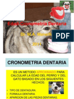 Cronometría Dentaria 2013