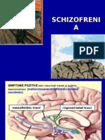 Prezentare+schizofrenie