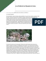 El Mantenimiento Al Estilo de La Manada de Lobos