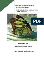 Estado actual del conocimiento de las mariposas de El Salvador. Ruben Sorto INBio 2007