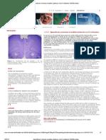 Artículo - D-Cicloserina, Agonista de Glutamato
