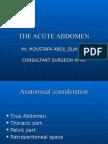 ER The Acute Abdomen