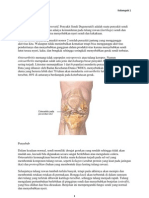 Osteo Artritis