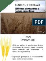 Trigo,Centeno y Triticale