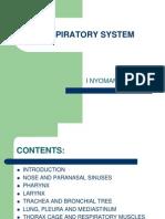 Lecture 1 - Respiratory System Baru 2