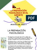 preparacion psicologica