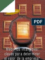 Medir Los Intangibles Art2