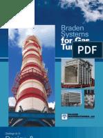 Braden_2010.pdf