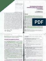 Las concepciones de los profesores en educación primaria.pdf