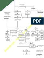 Cholelithiasis_schematic Diagram