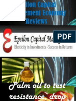 Epsilon Capital Management Economy Reviews