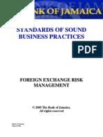 Standards-Foreign Exchange Risk Management